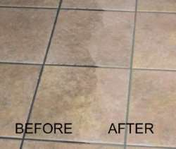 Tile Grout Cleaning Picture